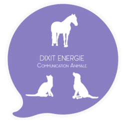 Dixit Energie Communication Animale
