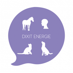 Dixit Energie Communication Animale et Spirituelle